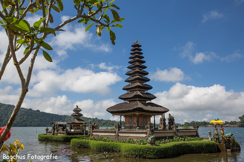 Nature Photography Challenge - Bali